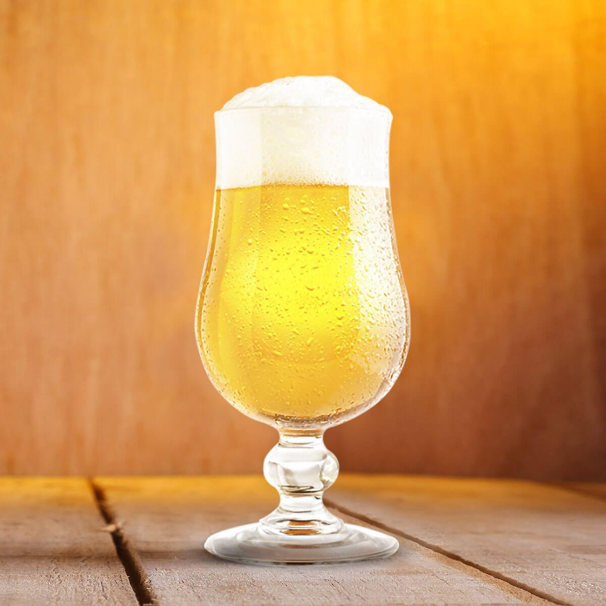 Belgian Blond Ale in a Tulip Glass